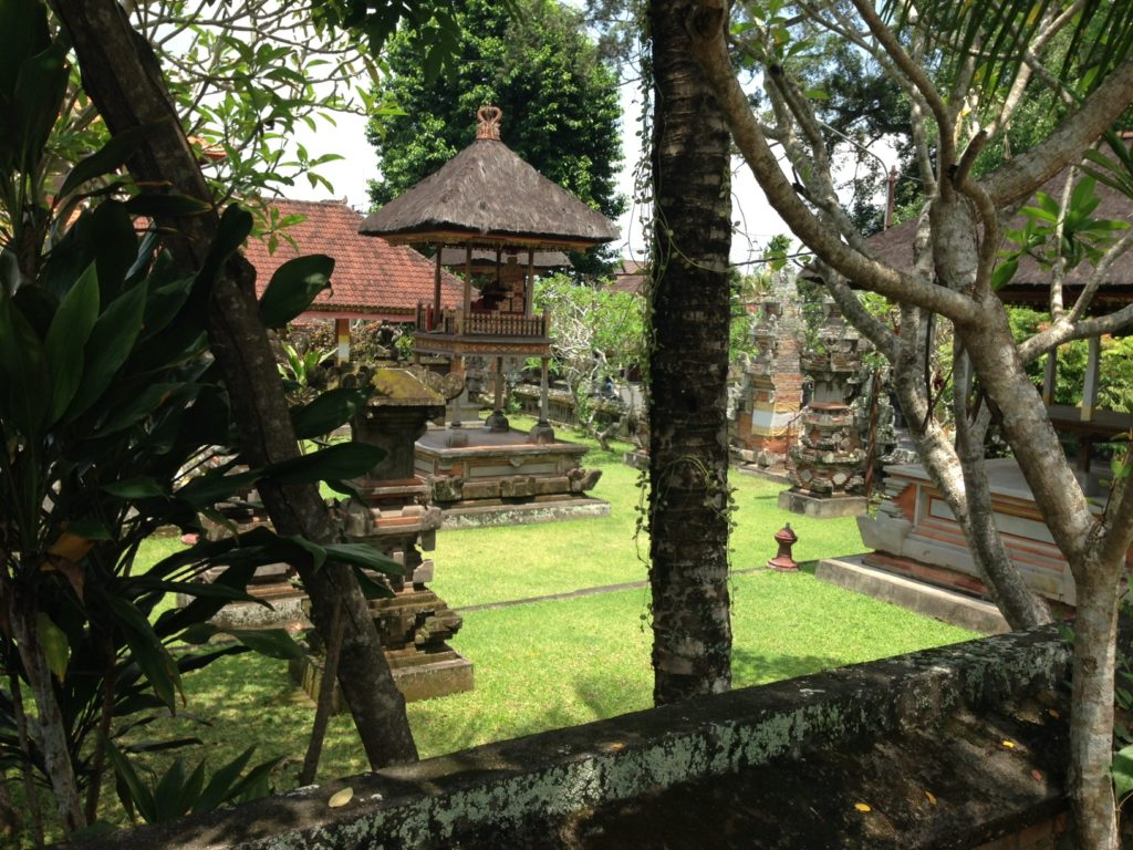 photos_of_bali_psychic_zya_3